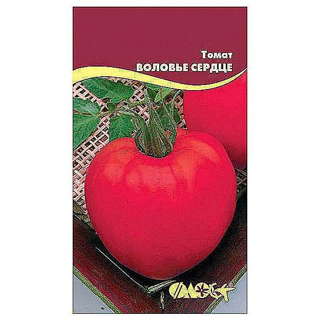 томат воловье сердце отзывы фото этот раз
